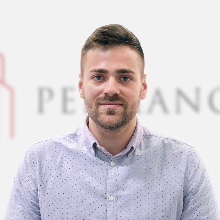 Petar-Novaković